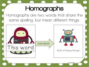 homographs visual